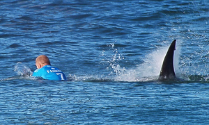J-Bay Open: Mick Fanning Attacked by Shark
